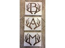 Antler Letters-B, A, Y