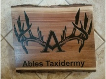 Ables Taxidermy
